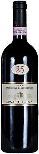 2007 Arnaldo-Caprai 25 Anniversario, Sagrantino di Montefalco Riserva DOCG, Italy (1,5 l)