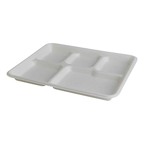 Disposable 5 Compartment Paper Plates School Trays Sugercane Biodegradable and Compostable Great for Lunch and Dinner Parties White 25 Pcs