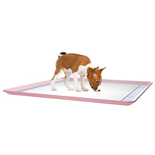 Best Dog Pad to Use
