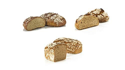 Vestakorn Handwerksbrot, Roggenbrot Auswahl - frisches Brot - 3 verschiedene Roggen & Roggenmischbrote vom Handwerksbäcker zum selbst aufbacken in 10 Minuten