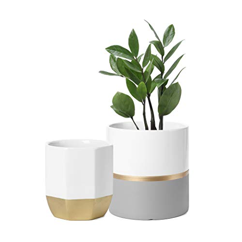 POTEY Ceramic Plant Pots Indoor Set of 2 - Modern Large Cylinder Planter + Medium Hexagon Plant Pot, White Grey Golden Decorative Detailing Containers for Aloe Plants Flower (6.1 inch + 5 inch)