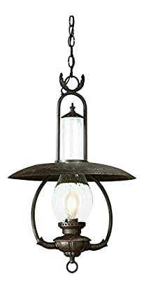 "Troy Lighting La Grange 16""W 1-Light Outdoor Pendant - Old Bronze Finish with Clear Seeded Glass"