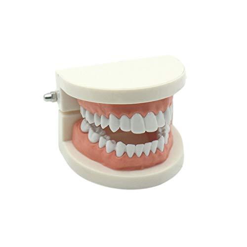 BENGKUI Brushing Tooth Teaching Set, 1200 Stück DIY Slime Weichobstscheiben Fingernagelzubehör Super Light Clay Zubehör Cremekleber Material Spielzeug für Kinder Geschenkzahnkarte