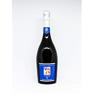 Il-Cielo-di-Montemaggio-Schaumwein-Cuvee-Brut-Extra-Trocken-Sekt-100-Chardonnay-Luxurioeser-Edler-Bio-Wein-aus-Italien-Fattoria-di-Montemaggio-075L