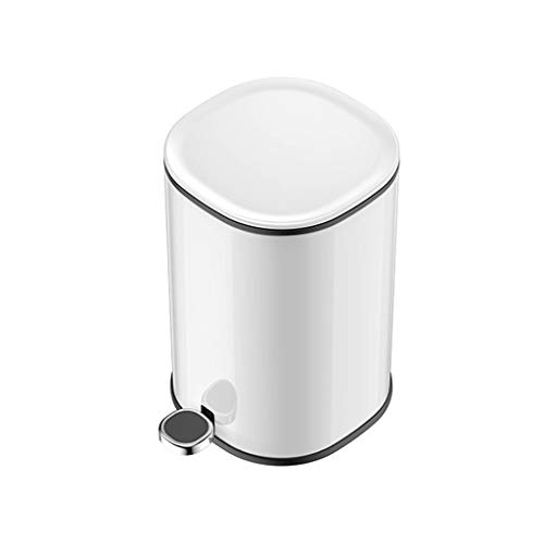 Best Review Of Stainless Steel Dual Compartment Recycle Trash Can, Pedal, 5L Recyle Bin for Kitchen,...