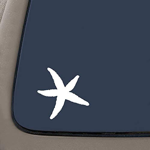 STARFISH Star Fish Wall. 5' X 5' White Decal Vinyl Decal Sticker for Cars LAPTOPS Walls Windows Toolbox Gift Product Name