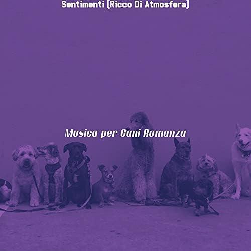 Musica per Cani Romanza