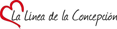 """Vinilo Adhesivo para el coche o la moto """" LA LINEA DE LA CONCEPCION """" (Ciudad) corazón Sticker ca.4x16cm Pegatina sin fondo"""