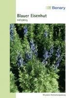 Benary Blauer Eisenhut