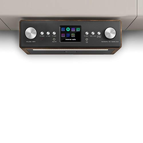 Auna Connect Soundchef - Radio Sottopensile da Cucina, Spotify Connect, Dab+ VHF, Bluetooth, RDS-Feed, Display TFT a Colori,...