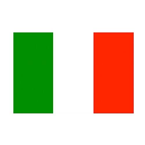 Taffstyle® Fanartikel Fussball Weltmeisterschaft WM & EM Europameisterschaft 2016 Länder Flagge Fahne 150cm x 90 cm mit Metallösen - Italien