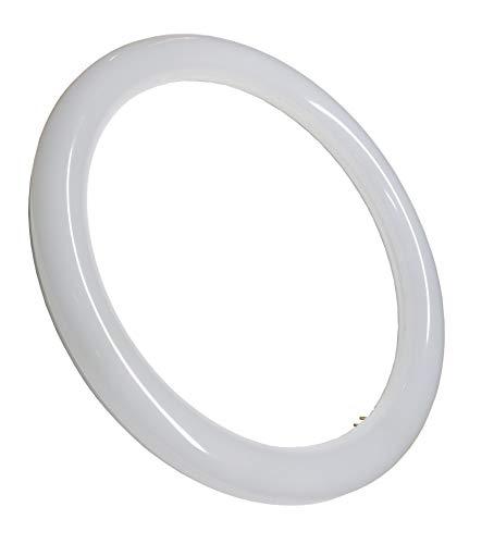 Tubo Circular LED G10 18w. Color Blanco Frio (6500K,). Sin instalacion. Tubo redondo cocina. 30cm. A++