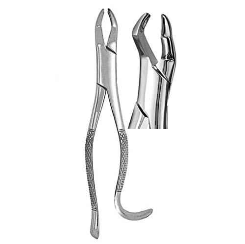 Yamu Upper Molars, Hook Handle Extracting Forceps 10H Surgical Instruments
