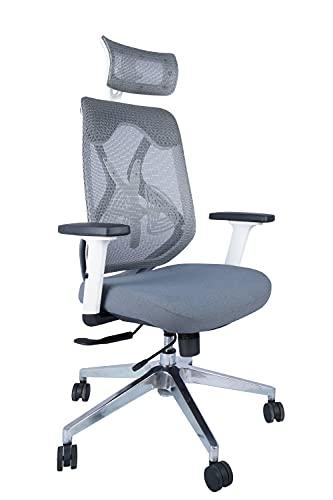 Casa Copenhagen TT Collection - High Back Ergonomic Chair/Executive Chair/Gaming Chair/MD Chair- Grey