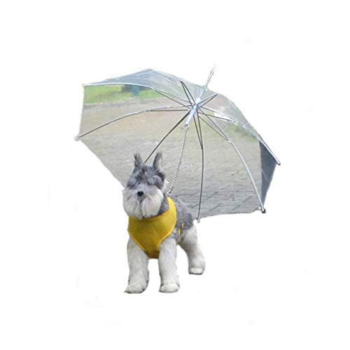 SUIWO Hond Regenkleding regenpak Puppy Lichtgewicht Waterdicht Pet Umbrella Small Dog Pet Regenjas Poncho Supplies met Hond Chain (Color : White, Size : 66cm*73cm)