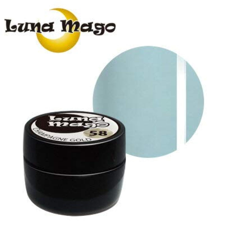 拍手叫ぶ不安定なLuna Mago カラージェル 5g 042 アクア
