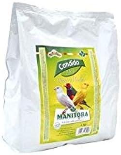 Manitoba - Pasta Blanca Mórbida Cándido 3 kg: Amazon.es ...