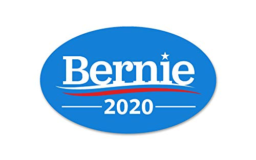 Stick It On Decals Bernie Sanders 2020 Car Decal/Sticker