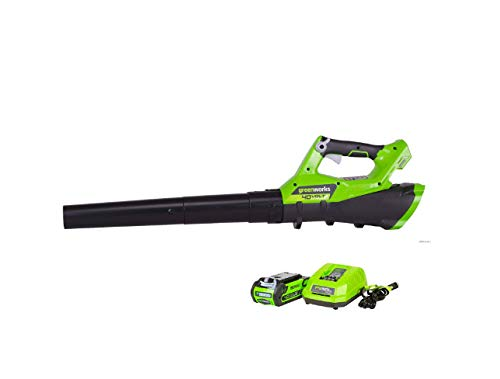 Alston Wat 40 Volt Leaf Blower Kit Battery Operated Powered Cordless Electric 40v Best Yard