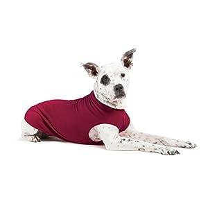 Gold Paw Stretch Fleece Dog Coat – Soft, Warm Dog Clothes, Stretchy Pet Sweater – Machine Washable, Eco Friendly – All Season – Sizes 2-33, Garnet, Size 8