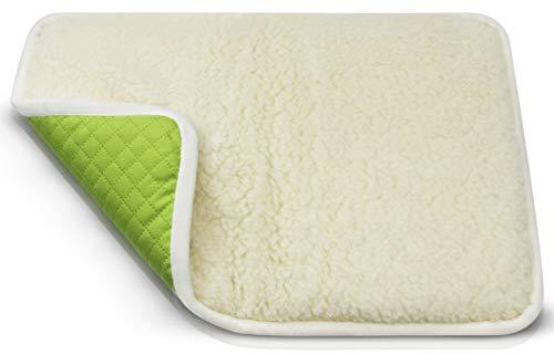 LUGUNO® Hundekissen 60 x 40 cm Grün für kleine Hunde (Chihuahua) Abwaschbar, Transportbox & Outdoor, Weich Flauschig