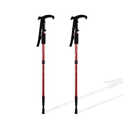 Hiking Pole and Walking Stick – Adjustable Height - Anti-Shock