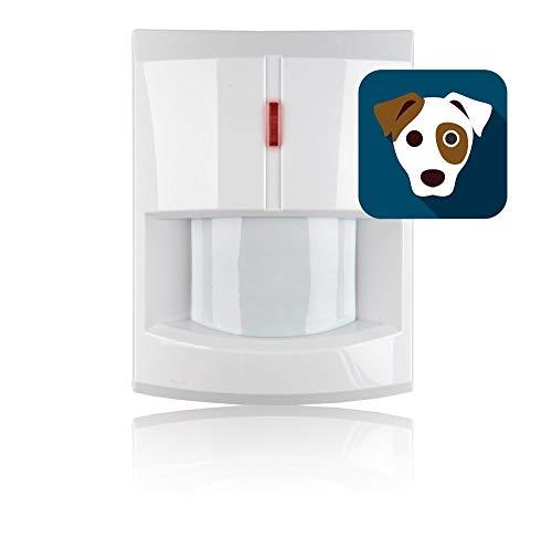 professionnel comparateur Détecteur de mouvement infrarouge sans fil compatible avec les animaux domestiques Q-3000 choix
