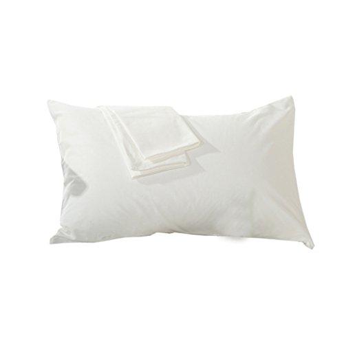 SIMPVALE Lot de 2 Taie d'oreiller 100% Coton,Canapé et Chambre Deco, 46 cm x72 cm (Blanc)