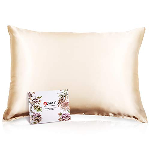 100% Mulberry Silk Pillowcase for Hair and Skin, Both Sides 19 Momme Pure Natural Silk Pillowcases Soft Breathable Queen 20''×30'', Champagne 1 Pack