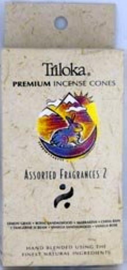 落ち着かないとげのある触覚Triloka Incense Cones?–?Assorted Fragrancesグループ2