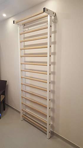 ARTIMEX Sprossenwand aus Metall/Holz (schwedische Leiter) für Physiotherapie und Gymnastik - Wird in Heimen, Fitnessstudios, Kliniken und Fitnesscentern verwendet - 230 x 90 cm, Code 221-M