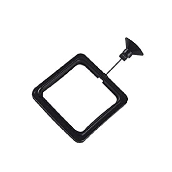 Evangelia.YM Fish Feeding Ring Safe Floating Food Feeder Circle Square with Suction Cup Easy to Install Aquarium for All Kinds of Fish - Observe Fish Closer  Square