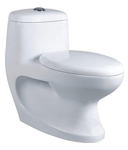 Belmonte Ceramic Floor Mounted One Piece Water Closet/Western Commode/Toilet/EWC Cally S Trap - White