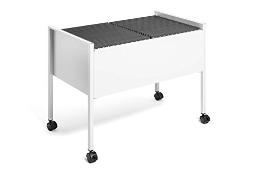Durable 308210 Eco Hängemappenwagen 100 Duo, grau