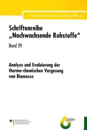 Analyse und Evaluierung der thermo-chemischen Vergasung von Biomasse (Schriftenreihe Nachwachsende Rohstoffe)