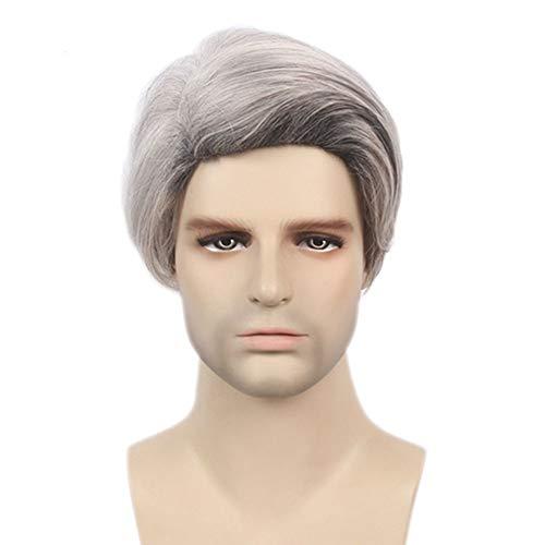 MAYI Perruques pour Hommes Européens Et Américains, Beaux Cheveux Courts Gris Argenté