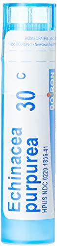 Boiron Echinacea Purpurea 30c, 80 Count Echinacea Purpurea Echinacea Medicine