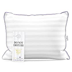 Queen Anne Hypoallergenic Synthetic Down Alternative Pillow