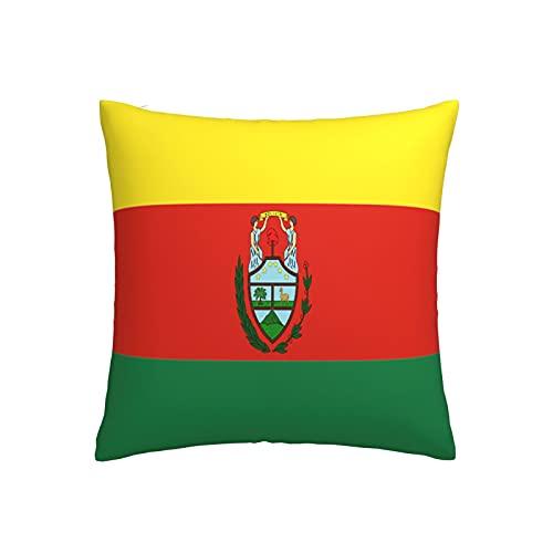 Kissenbezug mit Flaggen von Bolivien, quadratisch, dekorativer Kissenbezug für Sofa, Couch, Zuhause, Schlafzimmer, drinnen & draußen, niedlicher Kissenbezug 45,7 x 45,7 cm