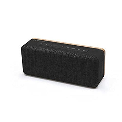 Thomson WS04N Enceinte Portable Bluetooth 20 W Batterie 2200 mAh Noir