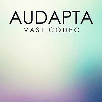 Vast Codec