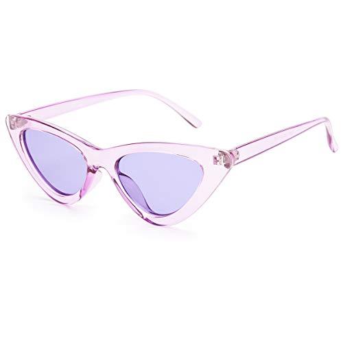 Livhò Retro Vintage Narrow Cat Eye Sunglasses for Women Clout Goggles Plastic Frame (Clear purple)