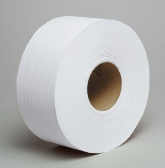 Giant Roll of Toilet Paper