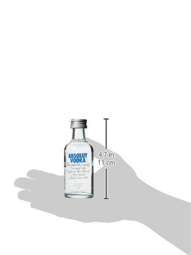Absolut Wodka Pet (1 x 0.05 l) - 2