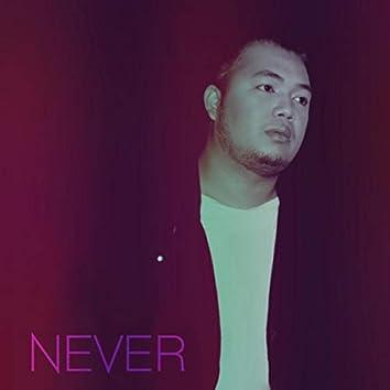 Never (feat. David V.)
