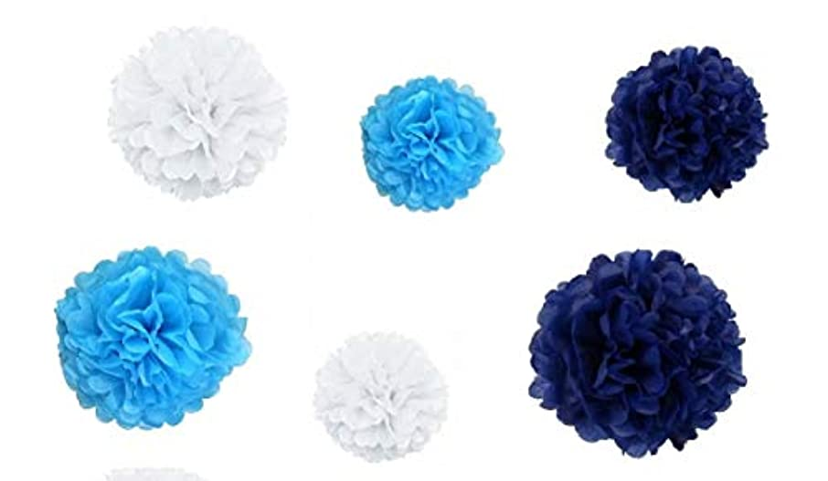 Tissue Paper Pom Poms Flower Balls for Birthday Wedding Party Baby Shower Outdoor Decorations (Set of 6: 3-16