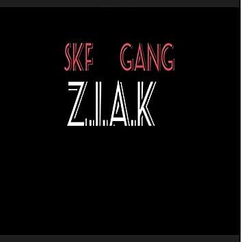 Z.I.A.K (Extended Version)