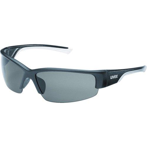 Uvex 9231960Sicherheit Gläser, Polar Vision