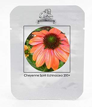 Cheyenne Spirit Orange Echinacea mehrjährige Sonnenhut Samen, Professional Pack, 200 Samen/Pack, sehr schöne neue Samen
