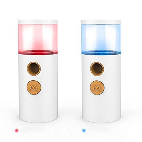 dailymall 2x Pulvérisateur Visage,Anion Nano Mist Sprayer 30ML,Brumisateur de Poche,Mist Sprayer Rechargeable USB, Portable Nano Facial Mist Sprayers